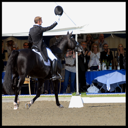 Equine Elite Grand Prix Hospitality Thurs 25 July 2019- Price per person  £155  Table x 8   £1147